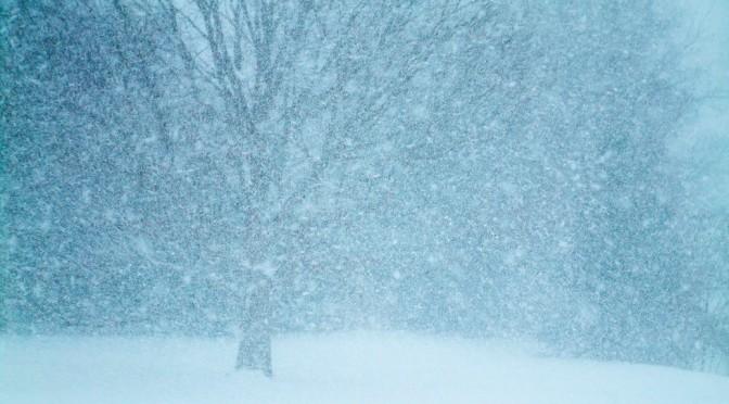 El Amor En Las Noches Frías